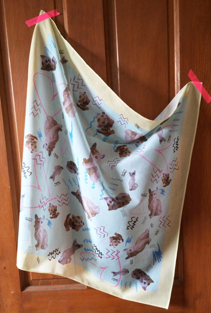cat scarf whole